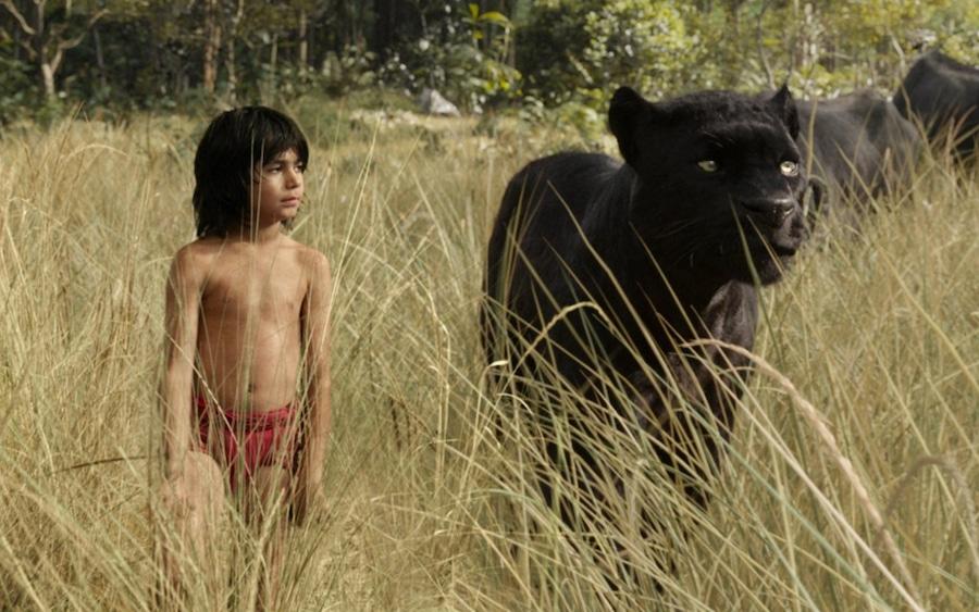 The Jungle Book