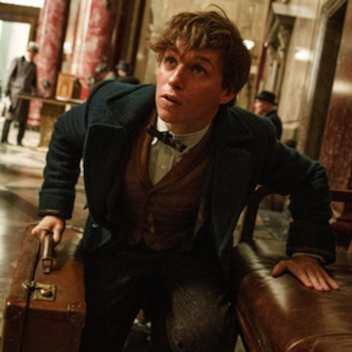 Thank Rowling! Fantastic Beasts and Where to Find Them Just Released a  Trailer and It Looks Magical | E! News
