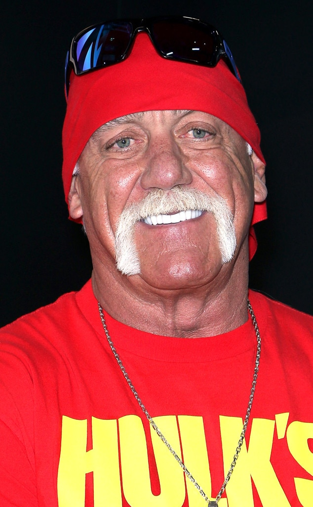 hulk hogan cagematch