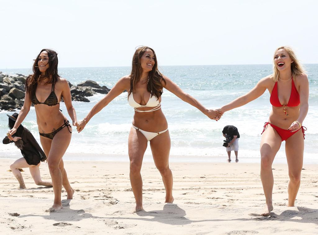 die bella twins bikini bilder