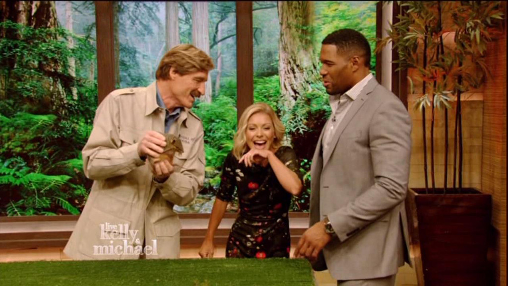 Kelly Ripa, Michael Strahan, Peter Gros, Live! With Kelly and Michael