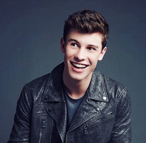 shawn mendes IG