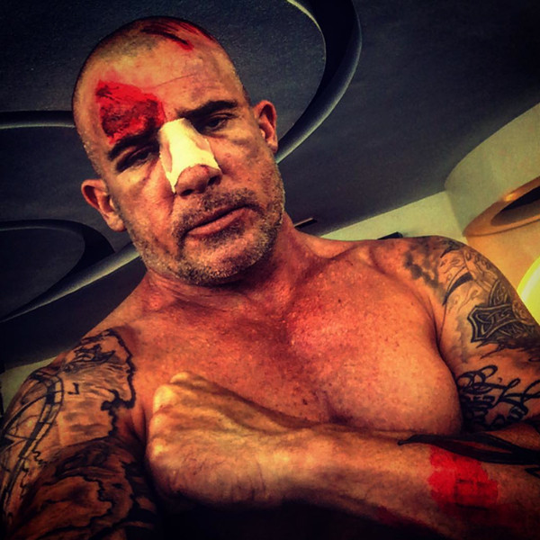 Dominic Purcell, Instagram