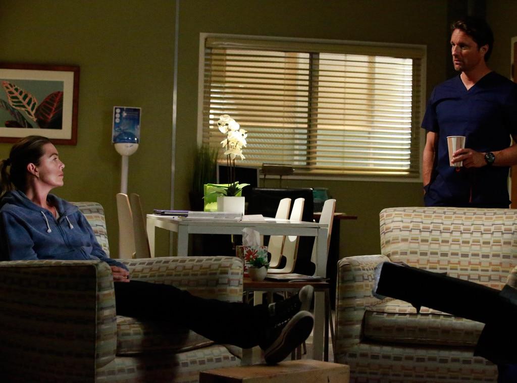 Grey\'s Anatomy (ABC) from 2016 Fall TV Spoiler-rama | E! News