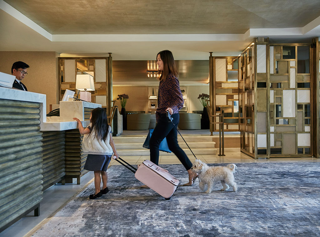 Bow-Wow: From Pawbars and Zen Centers to Royal Suites and Room Service, Inside the Luxe Dog Life