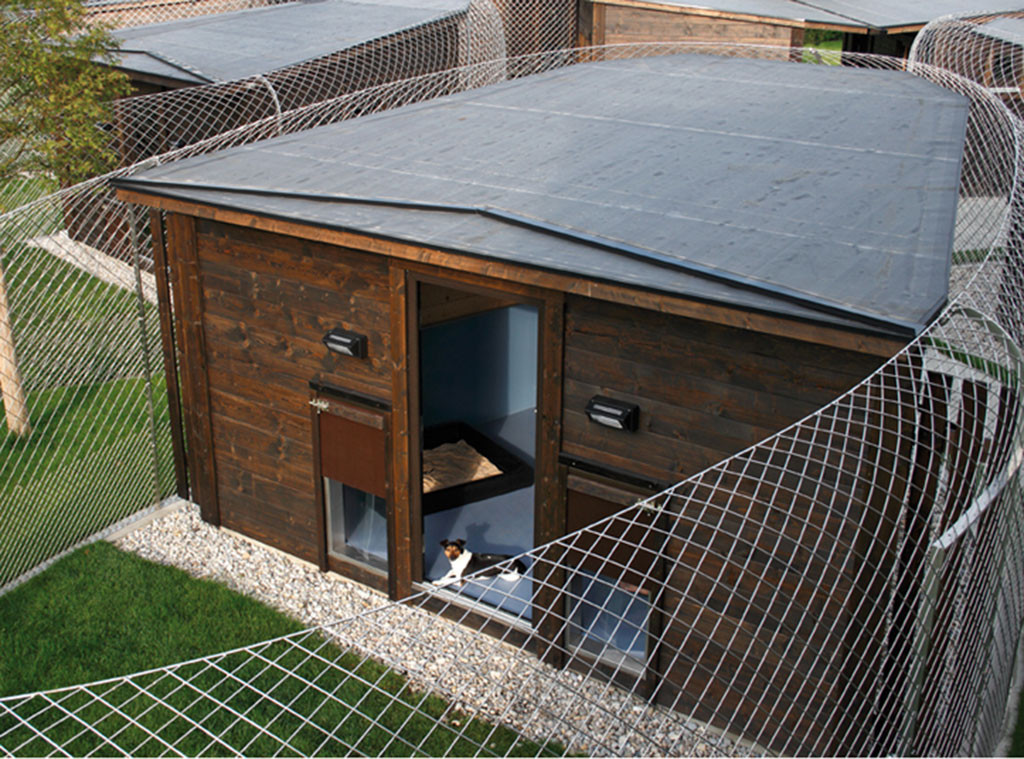 Canis Resort, Dog Lodge, Pet week