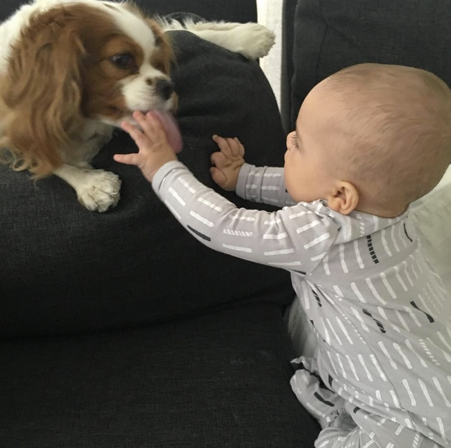 "Naya Rivera -  With her two cuties playing together, the new mom  wrote , ""Happy #nationalpuppyday indeed!"""