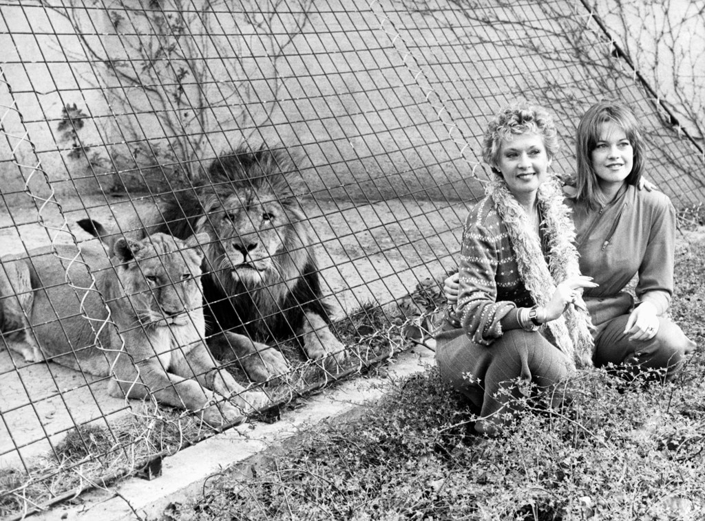 Tippi Hedren -  The Birds star adopted Neil the lion with her then-husband  Noel Marshall  while preparing to make their 1981 drama, Roar.  The wild animal roamed freely throughout their family home, played with their kids and even hopped into bed with them.