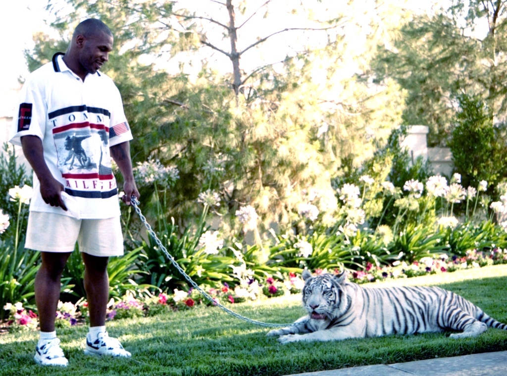 Mike Tyson, Tiger, Unusual Celebrity Pets
