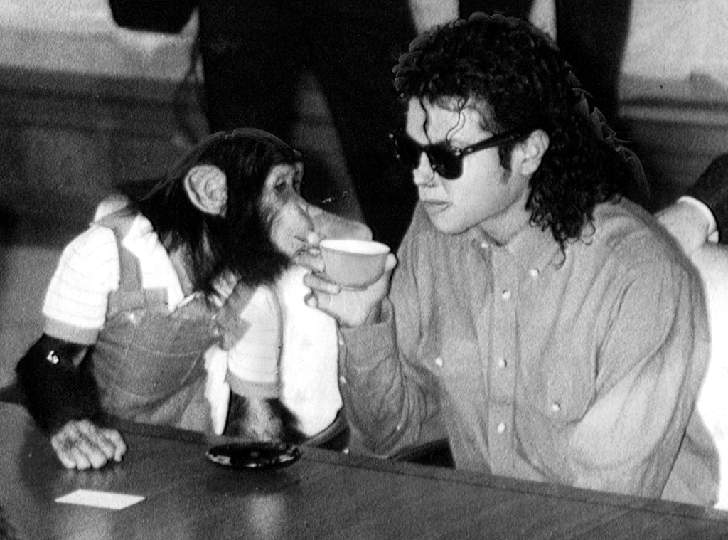 """Michael Jackson -  The """"Thriller"""" star famously purchased his pet chimpanzee Bubbles from a Texas research facility and raised him at the Neverland Ranch like a human baby, letting him sleep in a crib in his bedroom and wear a diaper.   After he grew too large and strong to be managed inside the house, the animal was ultimately moved to the Center for Great Apes, where he lives today."""