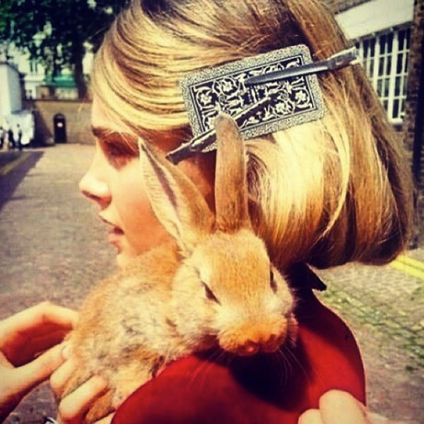 Cara Delevingne -  The British model and actress is the proud mom of a pet bunny rabbit named Cecil Bunny Delevingne. Cecil even has his own Instagram account with 10,000 followers.