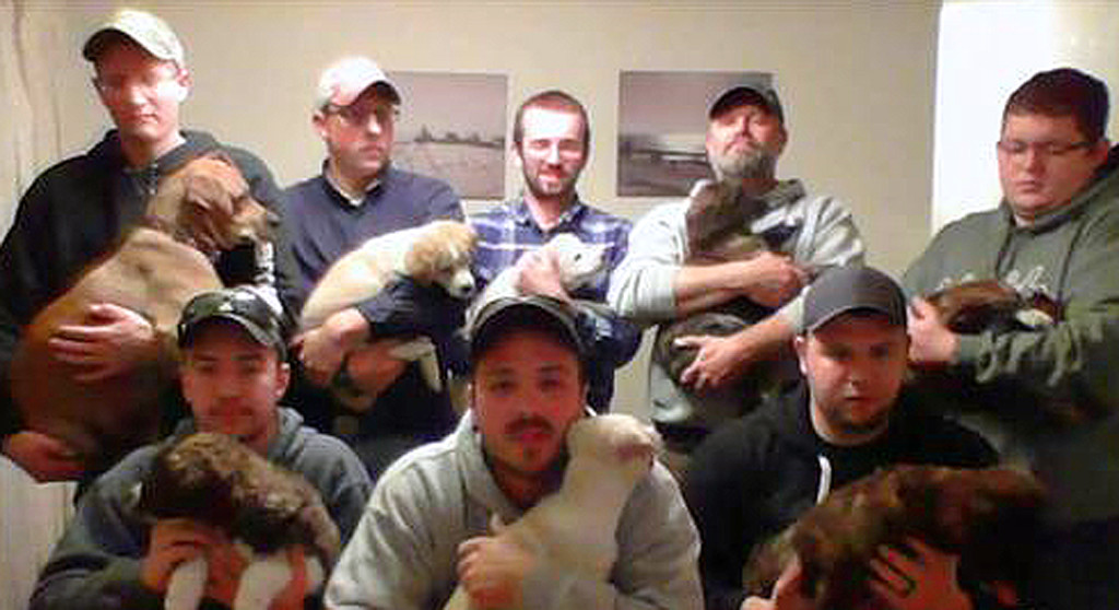 Bachelor Party Puppy Rescue Mission