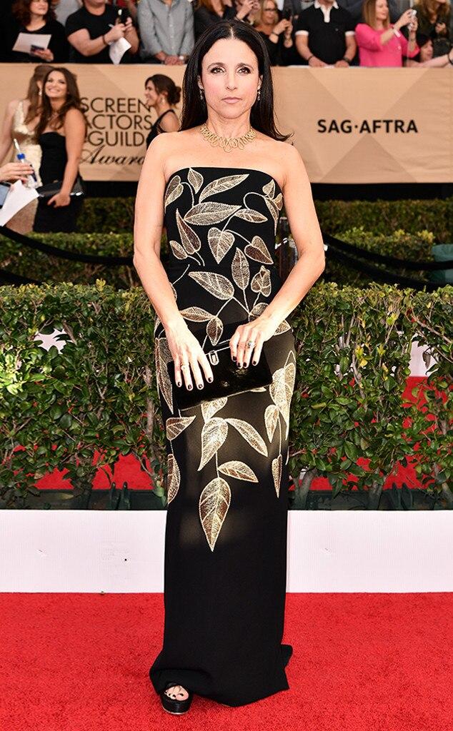Julia Louis-Dreyfus, 2017 SAG Awards, Arrivals
