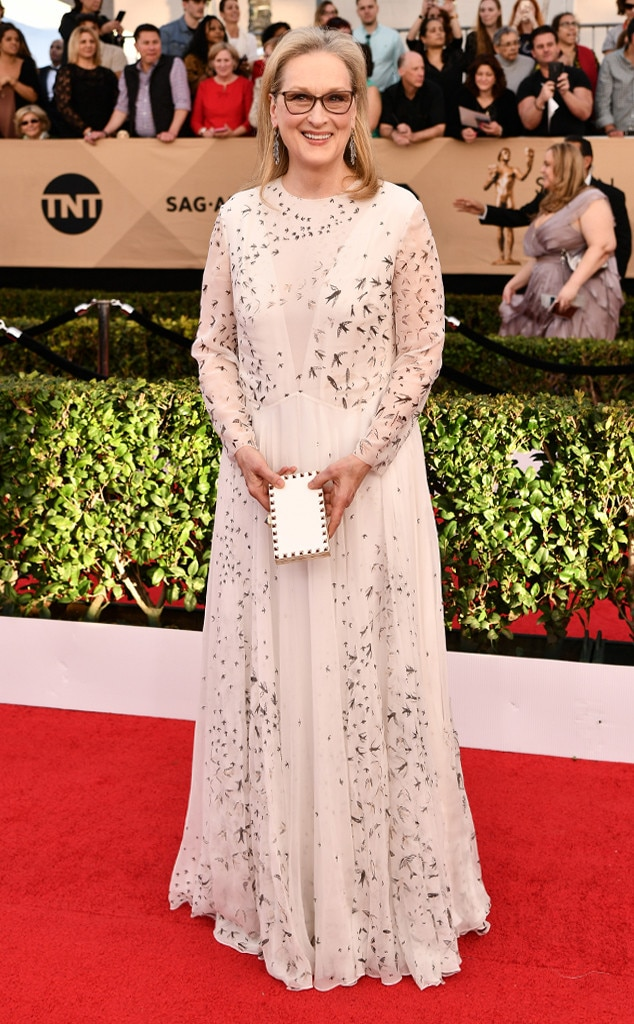 Meryl Streep, 2017 SAG Awards, Arrivals