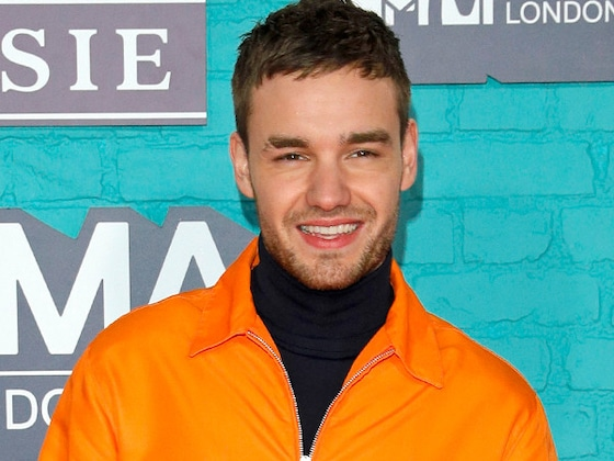 Liam Payne Gets Cozy With Model Cairo Dwek One Month After Cheryl Cole Breakup