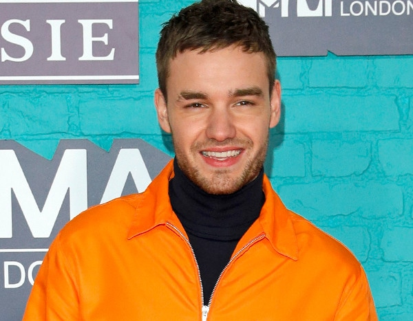 Liam payne gets cozy with model cairo dwek one month after for Cairo mobel