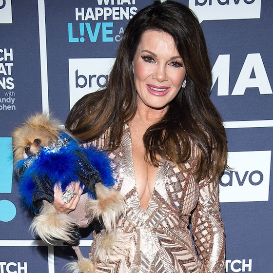 Lisa Vanderpump's <i>RHOBH</i> Future Revealed: Find Out the Status of All Your Favorite Stars