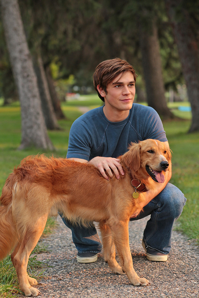 A Dog S Purpose Kj Apa