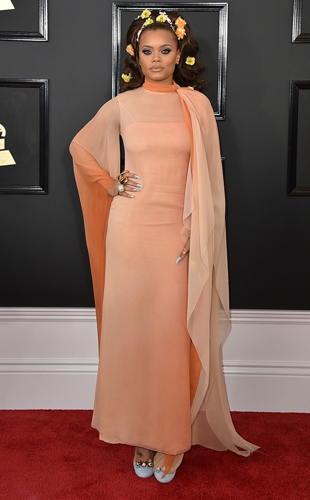 Andra Day From Grammys 2017 Worst Dressed Celebs E News