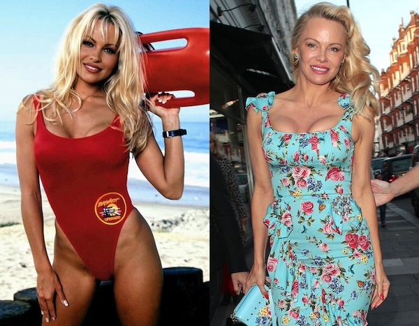 Image result for pam anderson now and then