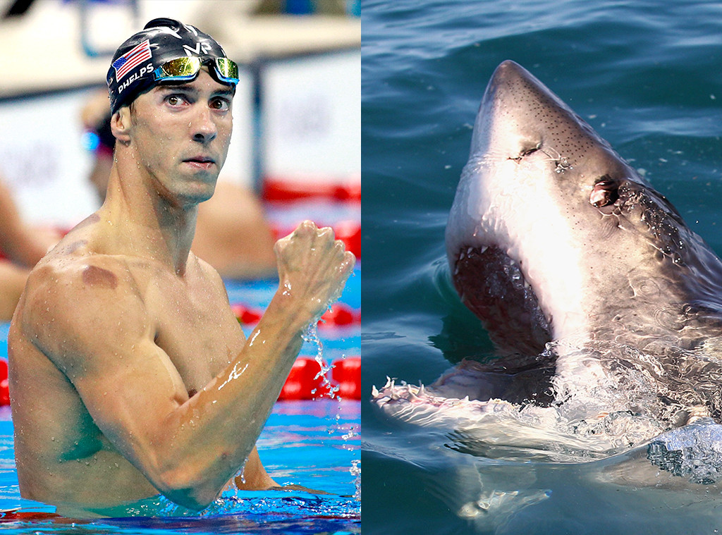 Michael Phelps, Great White Shark