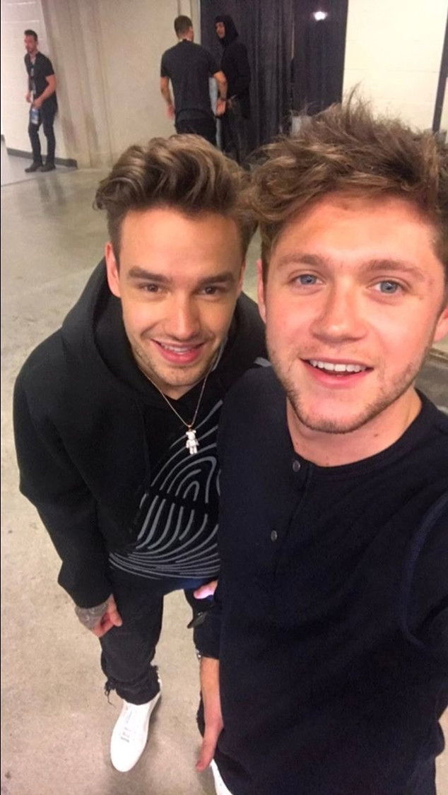 Niall Horan, Liam Payne, Twitter