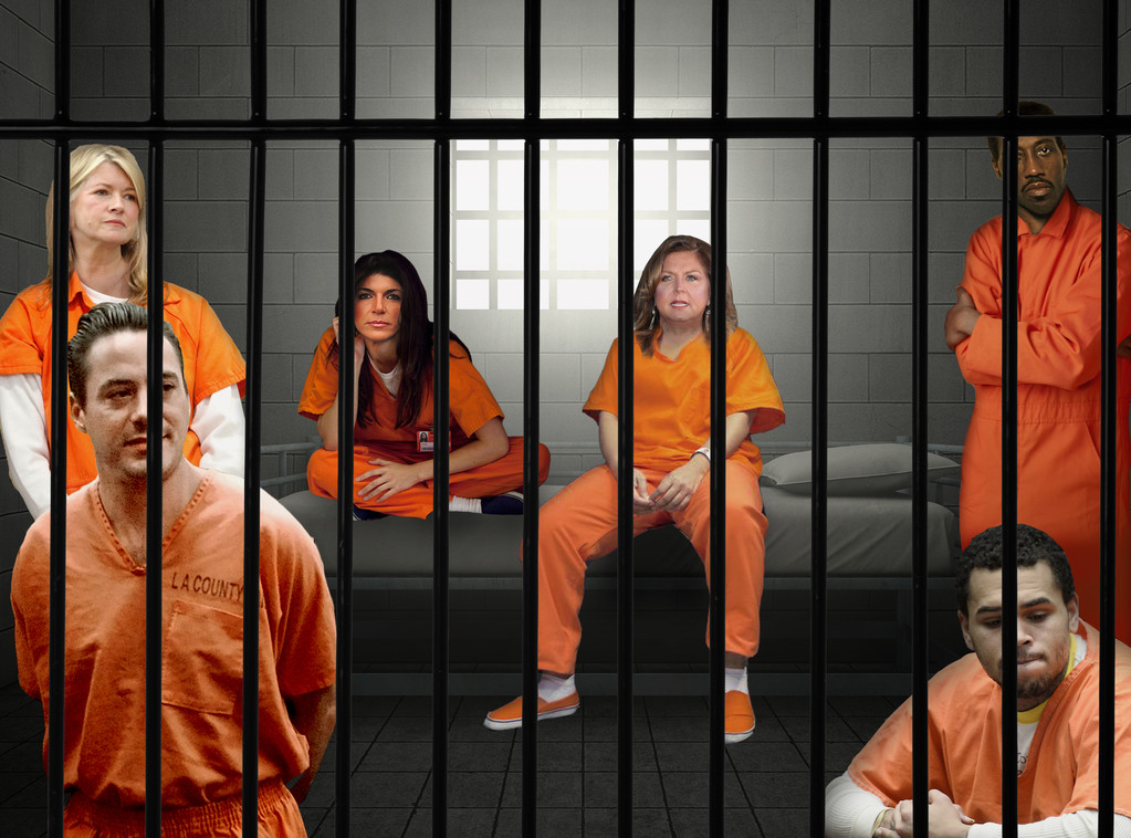 Stars Behind Bars, Robert Downey Jr., Martha Stewart, Chris Brown, Abby Lee Miller, Wesley Snipes, Teresa Giudice