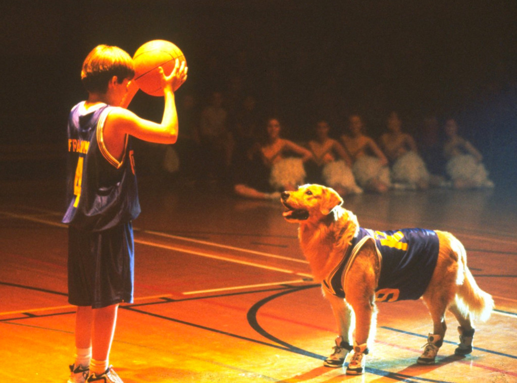 Air Bud, Kevin Zegers
