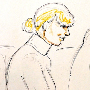 Taylor Swift, Andrea, Jesse Schaudies, Court Sketch