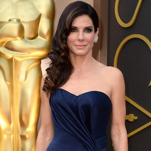 Sandra Bullock Donates 100000 To Humane Society For Wildfire Relief