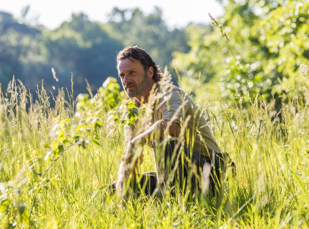 The Walking Dead Season 8, Andrew Lincoln