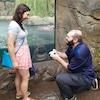 Fiona the Hippo, Marriage Proposal, Photobomb