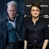 Johnny Depp, Fantastic Beasts, Daniel Radcliffe