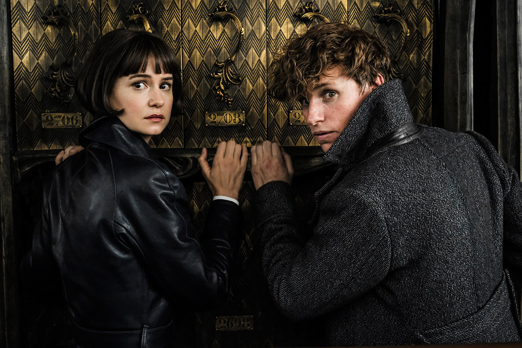 Fantastic Beasts: The Crimes of Grindelwald, Katherine Waterston, Eddie Redmayne