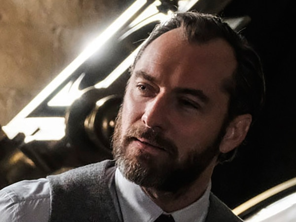 Jude Law Discusses Dumbledore's Sexuality in <i>Fantastic Beasts</i>