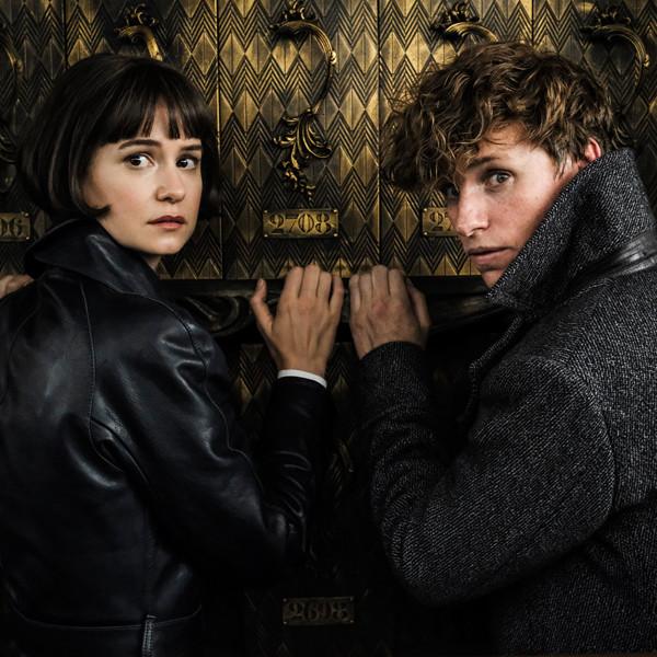 Fantastic Beasts: The Crimes of Grindelwald, Katherine Waterston, Eddie Redmayne