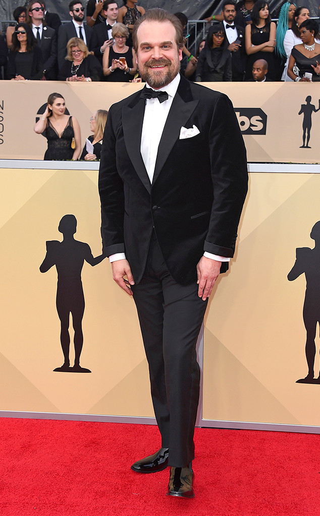 David Harbour, 2018 SAG Awards, Red Carpet Fashions