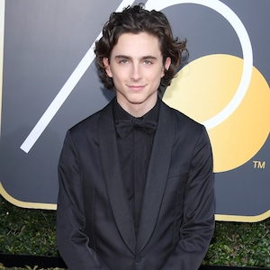 Timothee Chalamet, 2018 Golden Globes, Red Carpet Fashions
