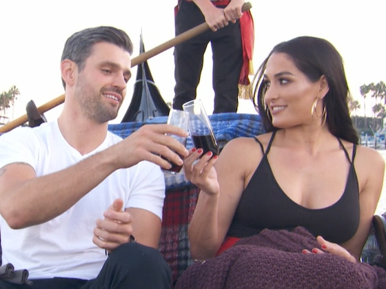 Nikki Bella Reveals the Status of Her Relationship With Peter Kraus