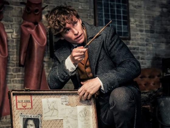 What 10 Critics Think of <i>Fantastic Beasts: The Crimes of Grindelwald</i>