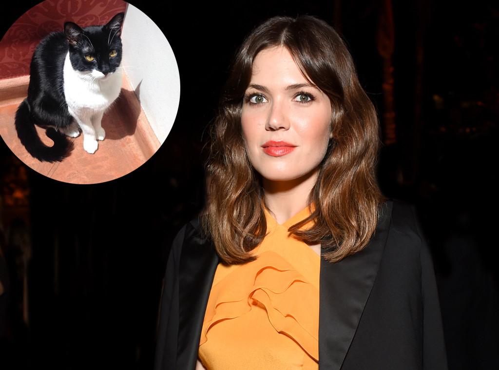 Mandy Moore's Cat Dies Before Wedding