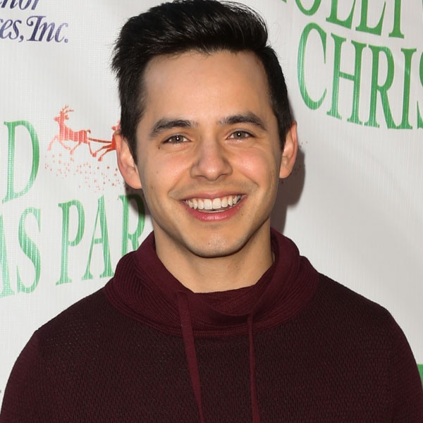 david archuleta age and height