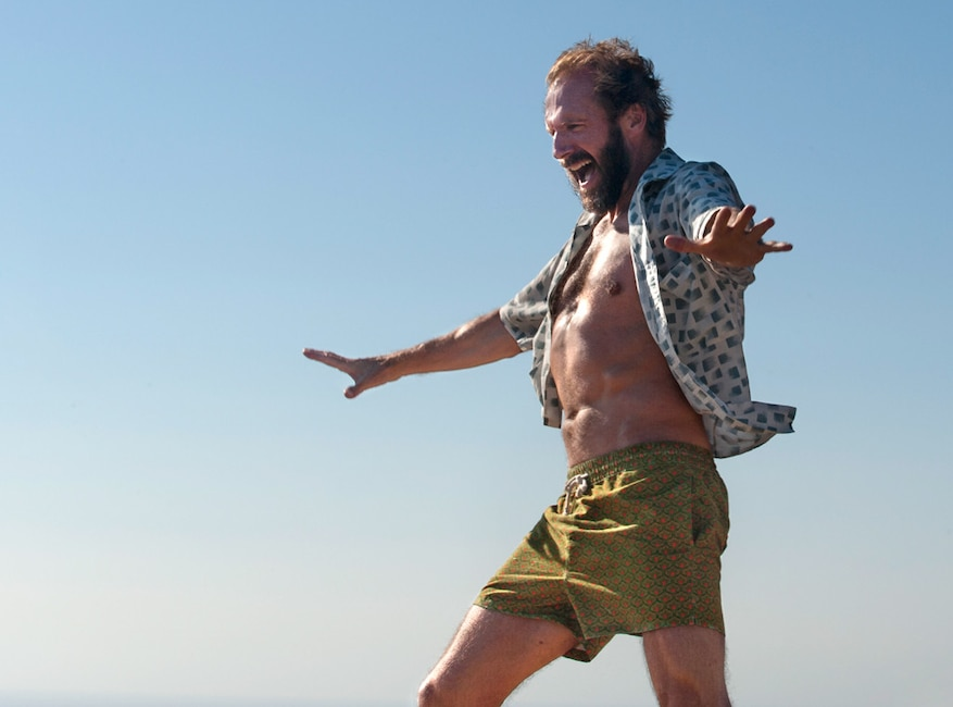 Ralph Fiennes, A Bigger Splash