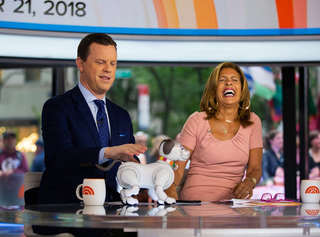 Willie Geist -  If you want a man who can discuss politics, pop culture—he loves his rap music—and has a loyal  Today  following, look no further than Willie. Besides, we have to imagine the  Morning Joe  star would love a later wake-up call.