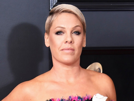 Pink Has an Epic Burn for a Stranger Who Criticized Carey Hart's Parenting