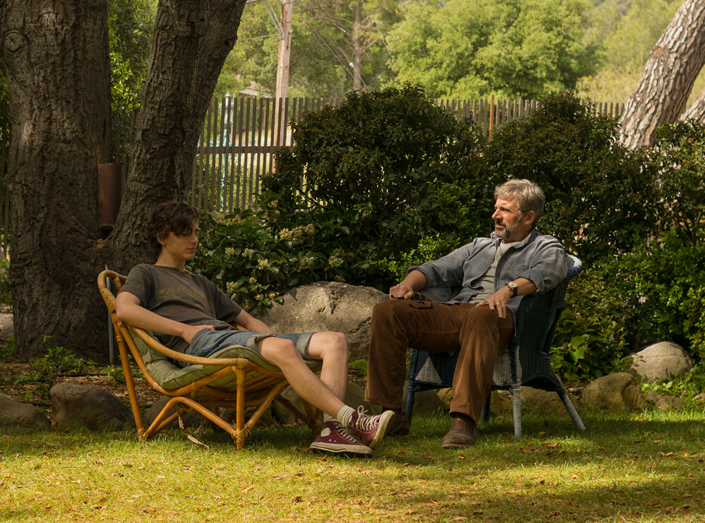 Beautiful Boy, Steve Carell, Timothée Chalamet