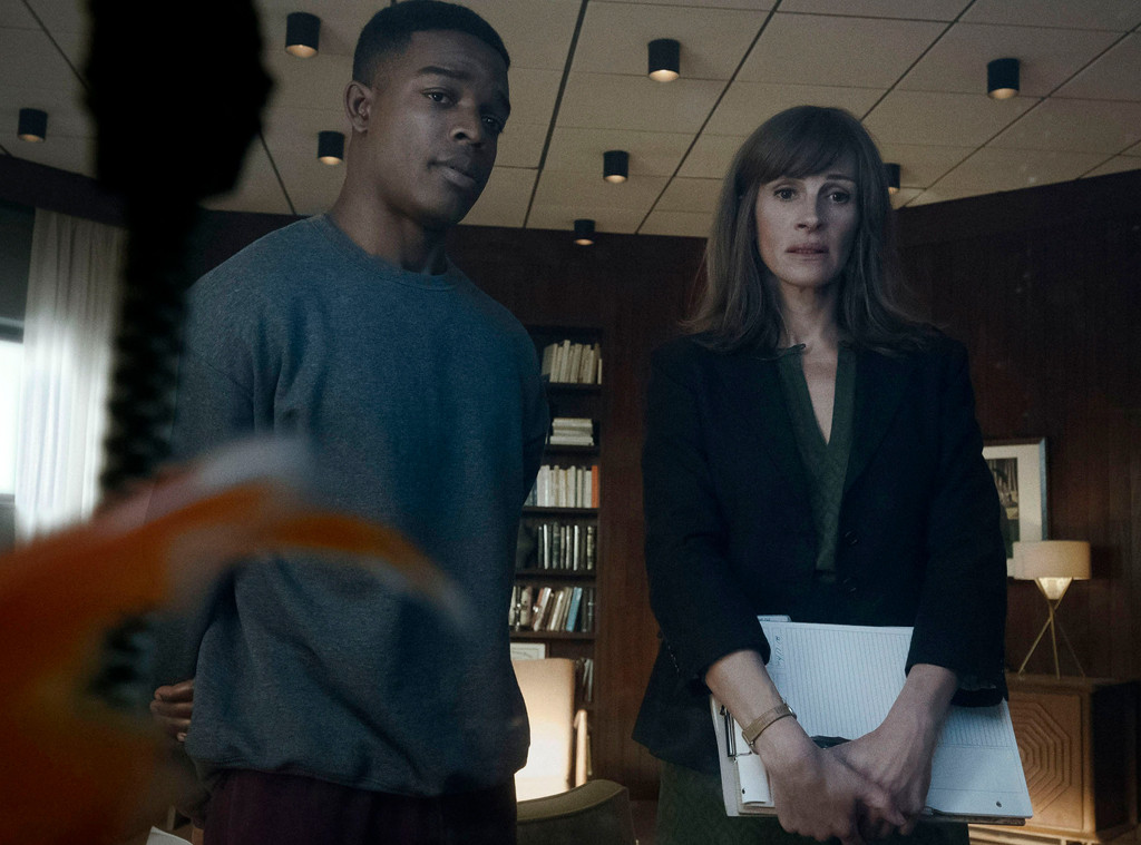 Stephan James, Julia Roberts, Homecoming
