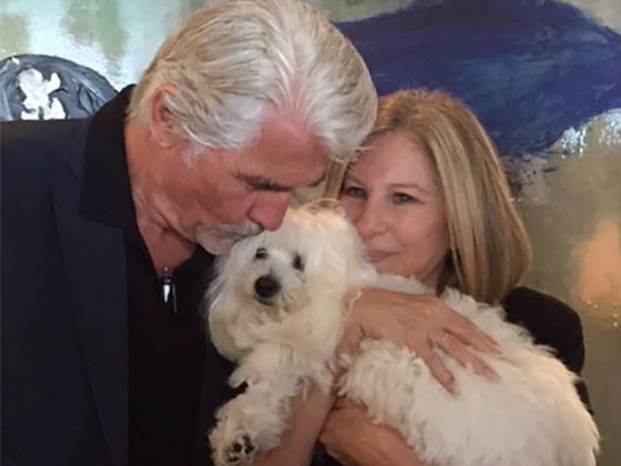 Barbra Streisand's Dog Bit Pierce Brosnan After Hearing Him Sing in <i>Mamma Mia!</i>