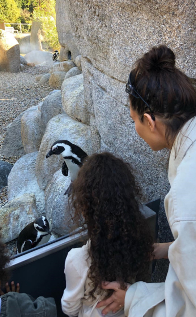 Kim Kardashian, North West, Zoo