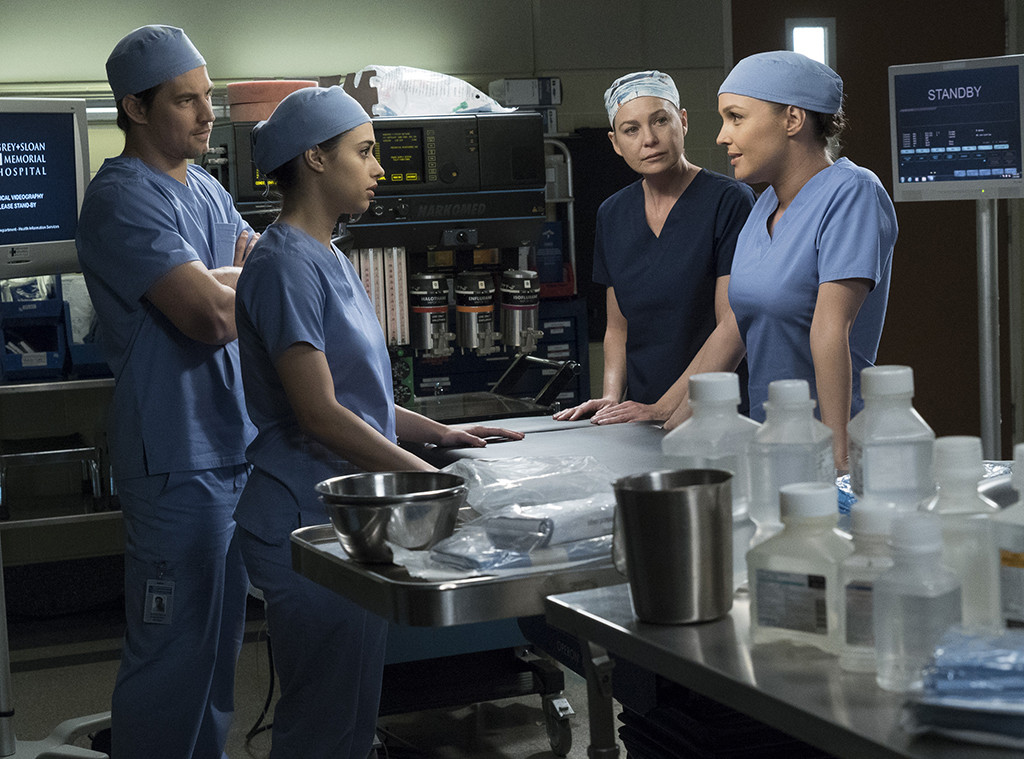 Grey's Anatomy Tackles ICE & the Day Is Saved By an Old ...